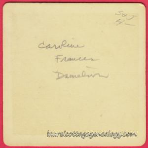Caroline Frances Danielson p2 (1)