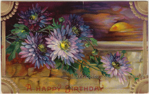 Happy Birthday Chrysanthemums pc1