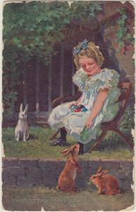 Bunnies In The Backyard pc1