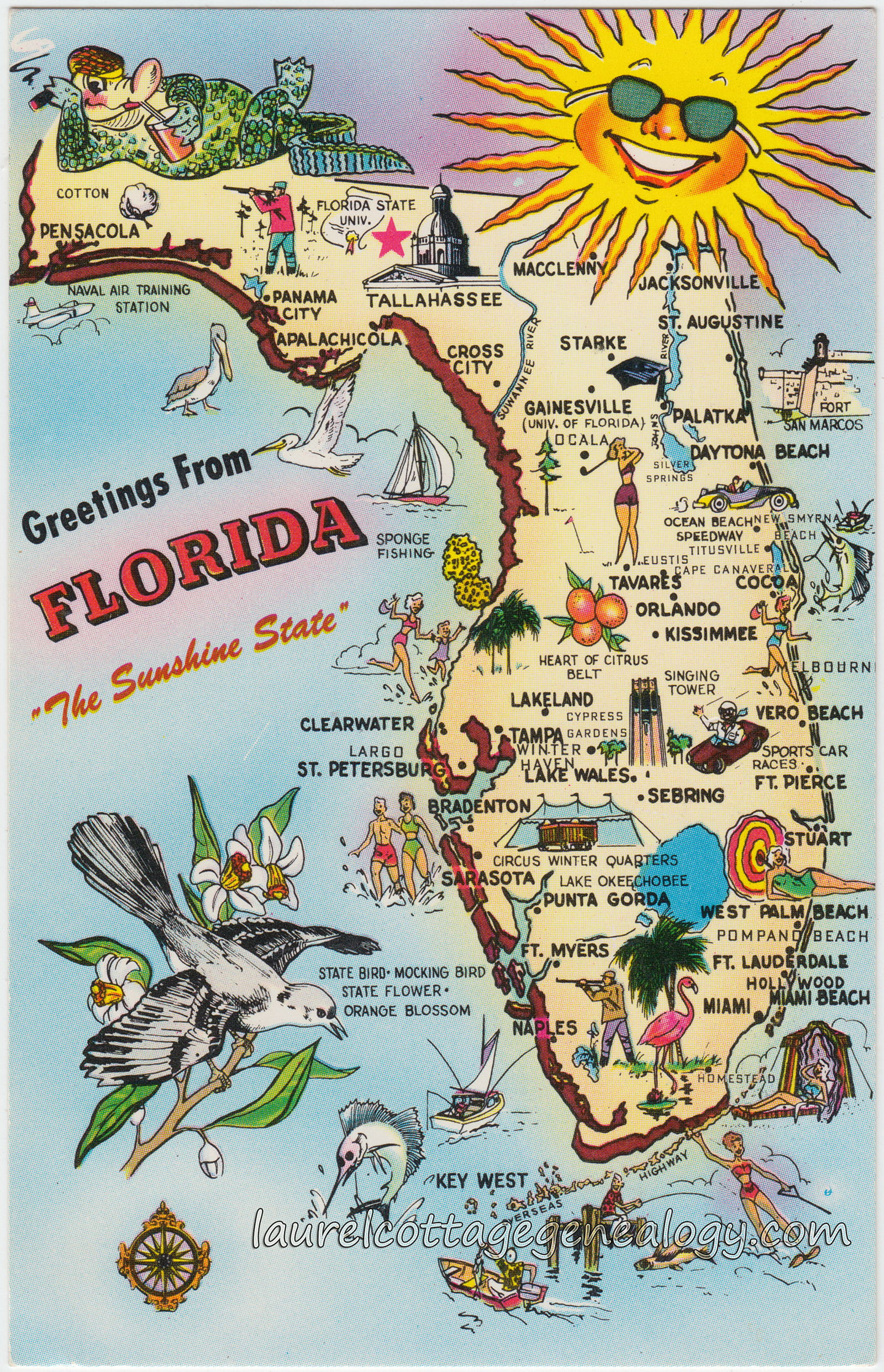 Greetings from florida laurel cottage genealogy greetings from florida pc1 kristyandbryce Image collections