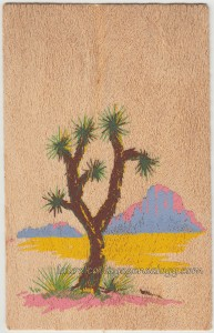 Yucca Wood pc1