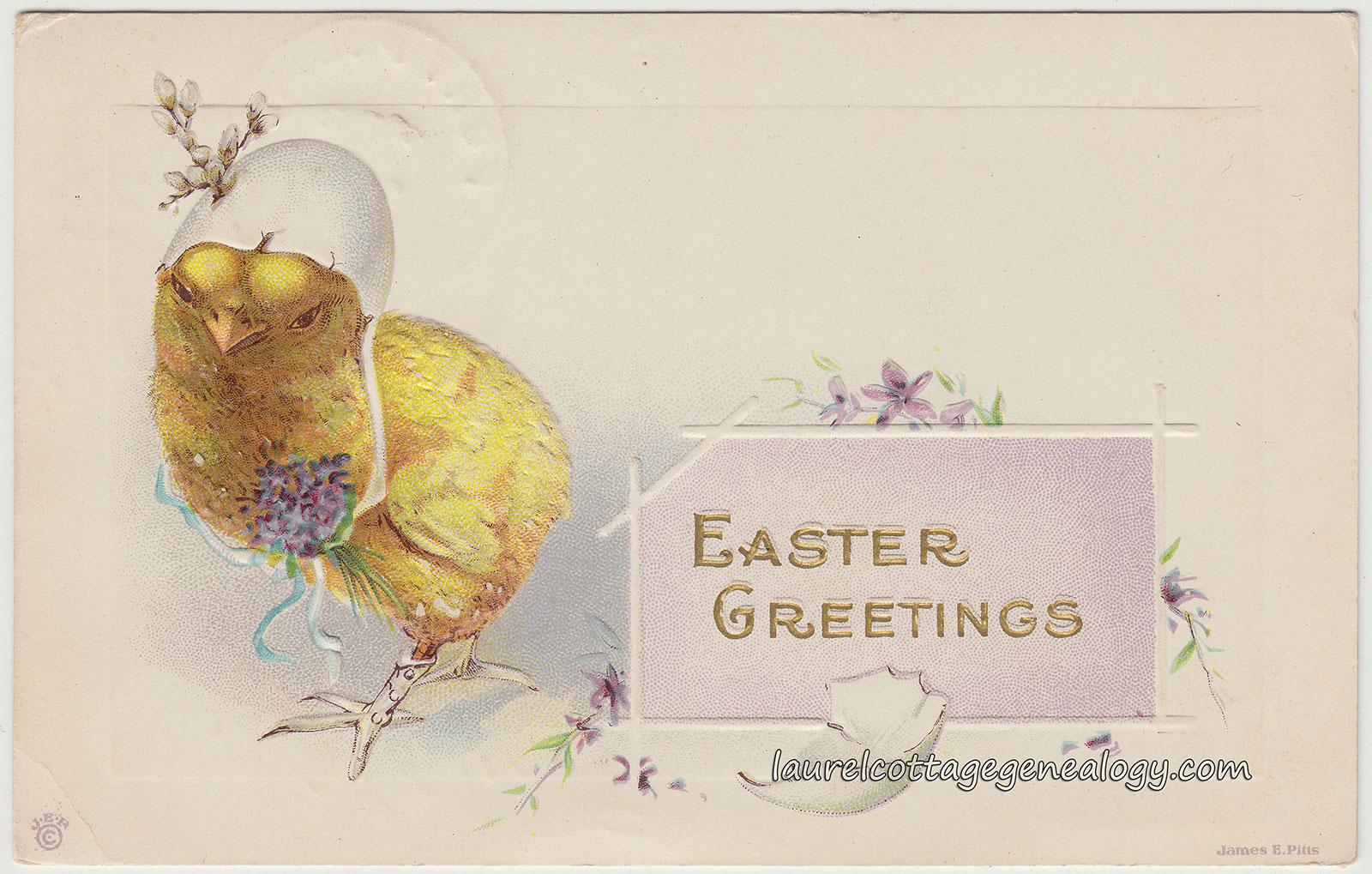 Easter laurel cottage genealogy easter chick for lily v herrling pc1 kristyandbryce Images
